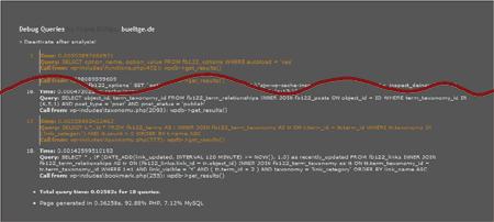 Screenshot Ergebnis WordPress Plugin Debug Queries