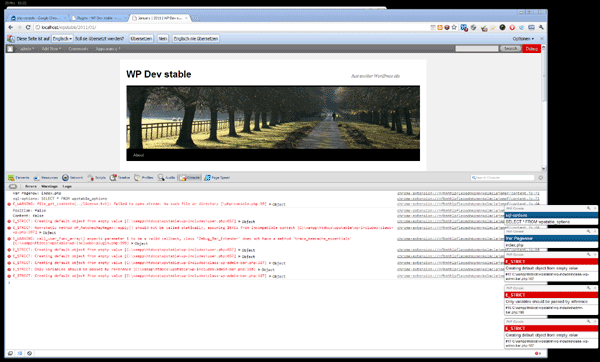PHP Console Log View